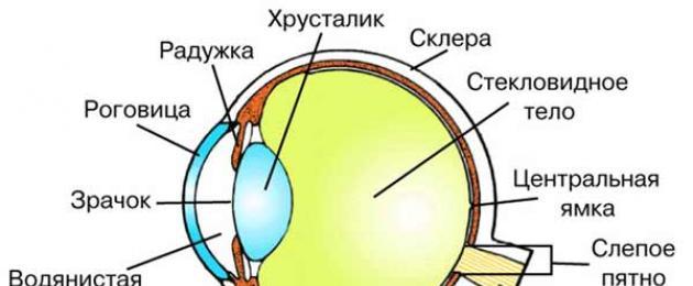 Oculare reface viziunea